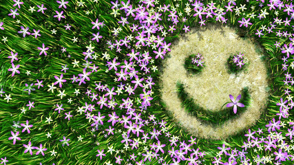 flower smiley on the grass decorative background