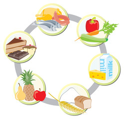 The food in groups: meat, poultry and fish + vegetables+ milk an
