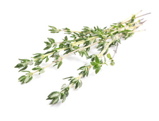thyme bunch isolated on white