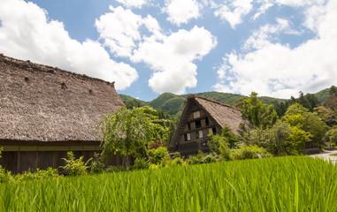 Shirakawago village, Japan