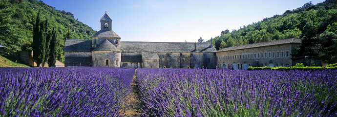 Photo Blinds Lavender abbaye de senanque