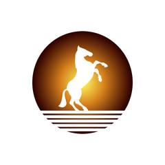 Şaha kalkmış Arap atı