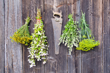 various herbs bunches on wooden wall