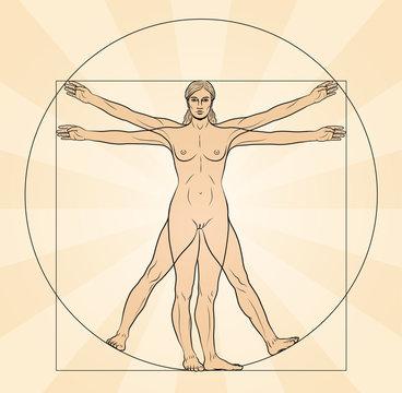 Frau im Fokus, vitruvianische Figur