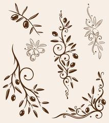 Oliven, Olivenzweige, Zweig, Küche, kochen, vector set