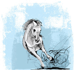 Sketch of white horse running