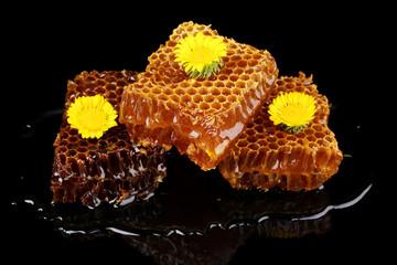 Honeycomb closeup on black background