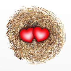 Nicely Built Bird Nest with Two Red Heart