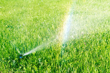 Water sprinkler and rainbow