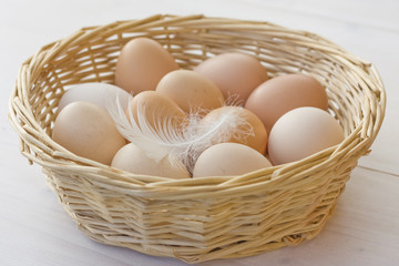 Organic eggs in basket with chicken feather