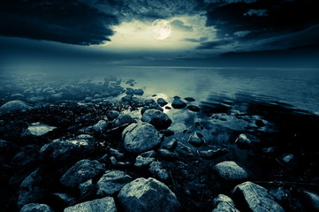 Fototapete - Moonlit lake