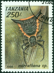stamp printed in Tanzania shows image of a micrathena sp