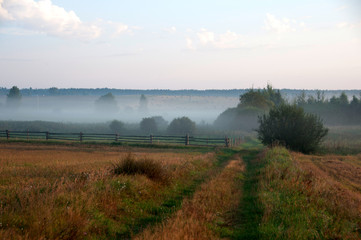 krajobraz we mgle