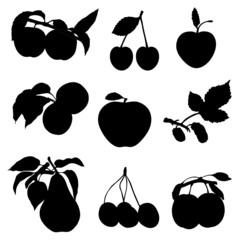 Collection of silhouettes of fruit and berries