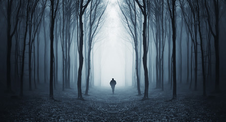 Photo sur cadre textile Gris traffic Silhouette of lone man in forest
