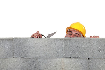 Stonemason peering over a low wall