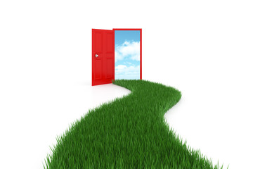 Open door on background sky with driveway grass