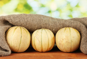 sweet melons in sackcloth on green background close-up