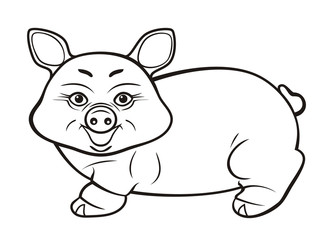 The pig. A contour