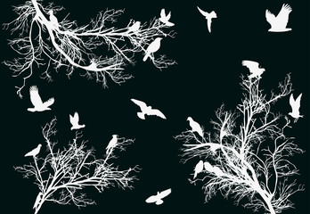 white trees and birds on dark background