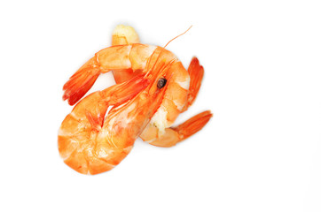 Shrimps, isolated