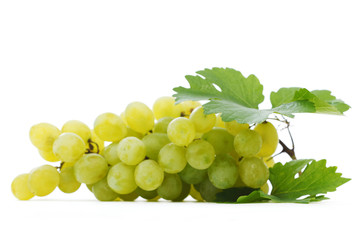 Grapes branch with leaves isolated on white background