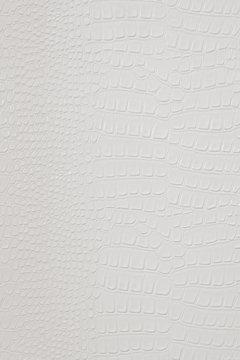 White crocodile skin