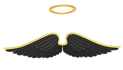 Black angel wings isolated on a white background.