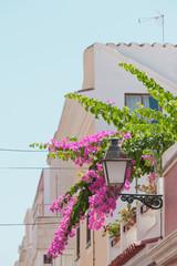 Lebensfreude in Ciutadella - Menorca - Spanien