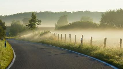 morgens - landstraße und nebel