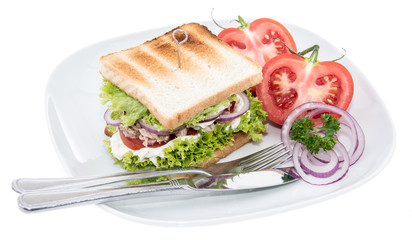 Tuna Sandwich isolated on white