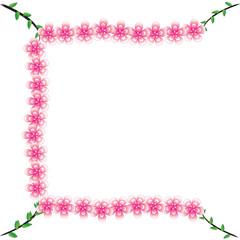 Flower of frame on background