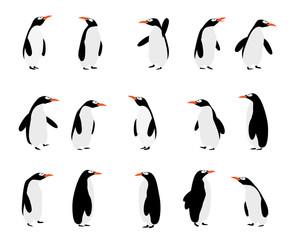 Penguins background