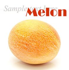 Ripe whole melon isolated