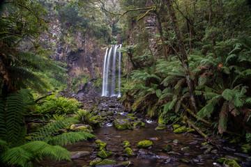 ecologia e natura