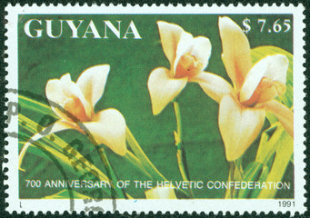 stamp printed in Guyana shows orchid flower