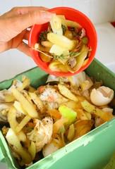 recyclage d'épluchures de légumes