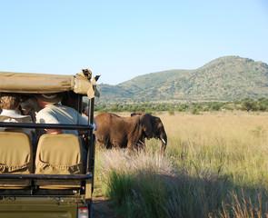 Safari mit Elefanten