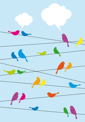 birds sitting on wire, vector background
