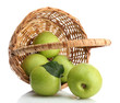 Ripe green apples with leaves in basket isolated on white
