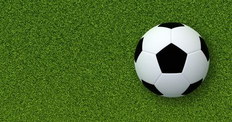 Soccer ball (Football) on green grass