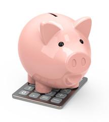 Schwein auf dem Taschenrechner
