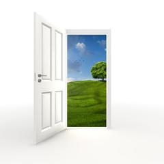 eine Tür in einem weißen Raum öffnet sich zur Natur