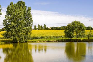 Countryside near Le Mans