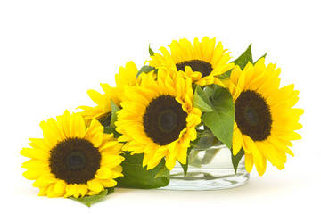 Beautiful sunflower bouquet in glass vase