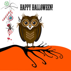 Halloween with cute owl, spider and candy.