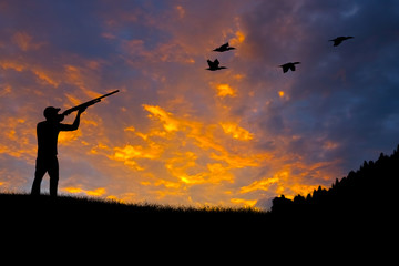 Photo sur Plexiglas Chasse Bird Hunting Silhouette