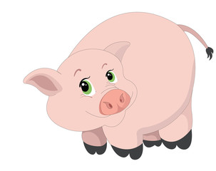 Cute pink pig, illustration