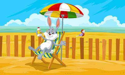 Rabbit at the Beach, illustration