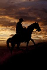 Fototapete - Cowboy riding horse up hill